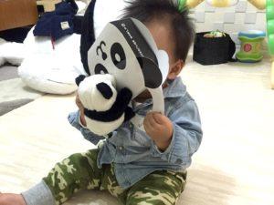 パンダの空箱でパンダさんと一緒に遊ぶ