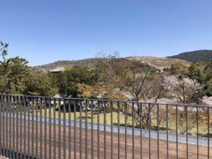 屋上庭園からの眺め