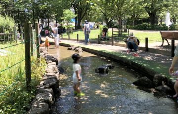 萩中公園水遊び場