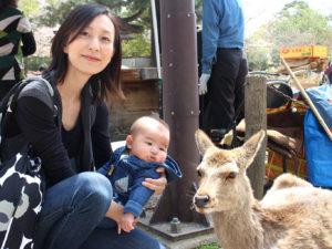 鹿さんと初対面