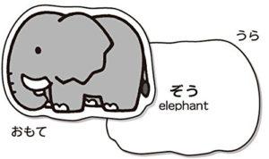 象のカード裏は名前表記