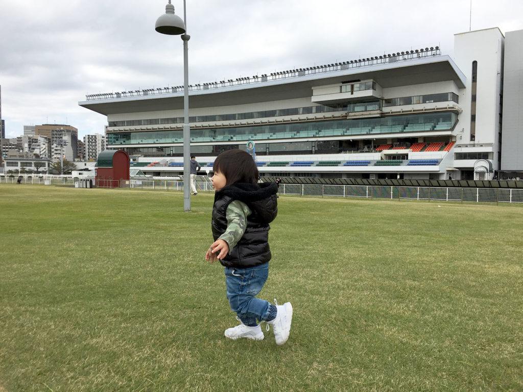 馬場内の芝生を走る息子