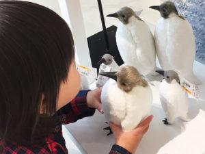 ペンギンの飾りに興味津々