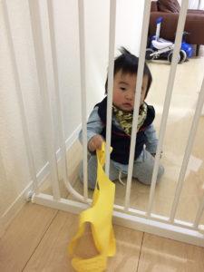 ゲートの柵からものを出し入れする息子