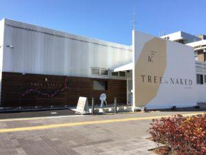 TREE by NAKED tajimi外観