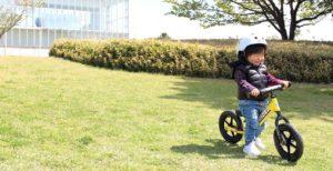 ストライダーで楽しく遊ぶ息子