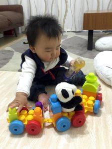 パンダのぬいぐるみを乗せて遊ぶ息子