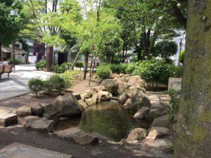仲蒲田公園人工の流れ