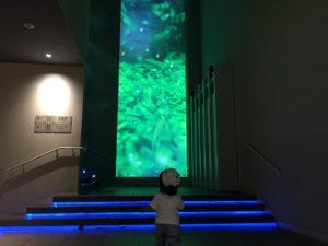 大きなスクリーン