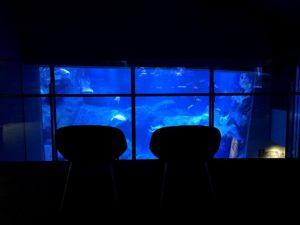 水槽を眺められる椅子