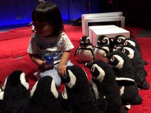 たくさんのペンギンさんのぬいぐるみに囲まれる