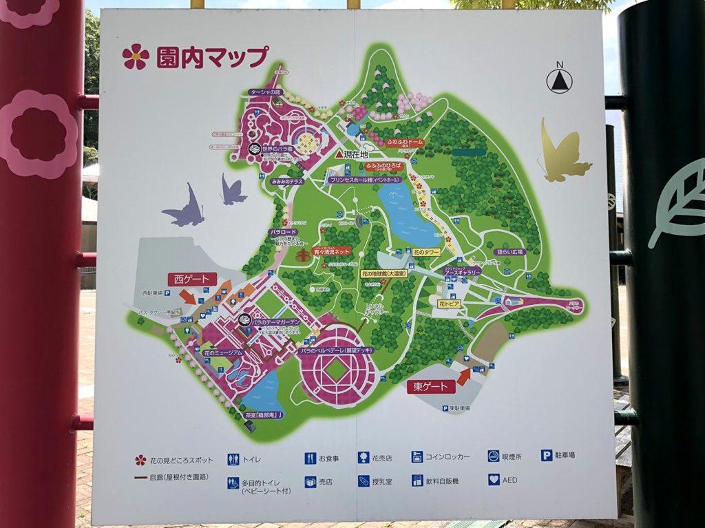 花フェスタ記念公園マップ