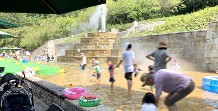 公園 花 フェスタ 記念 世界最大級のバラ園が魅力!岐阜「花フェスタ記念公園」