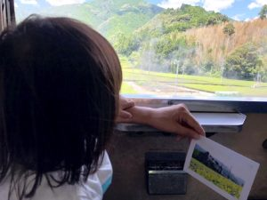 乗車中眺めがとても綺麗