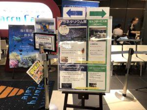 羽田空港スターリーカフェ入口