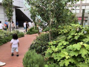 植栽のある緑の歩道