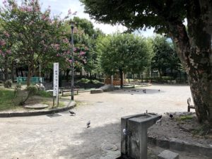 徳持公園入口付近より撮影