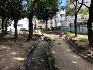 木陰の水遊び場