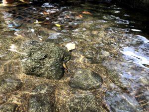 出っ張った石