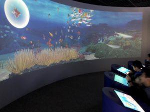 塗り絵をした魚たちが泳ぐ映像