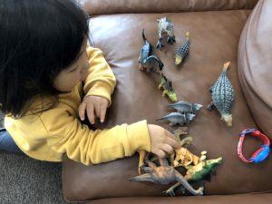 恐竜フィギュアでごっこ遊び