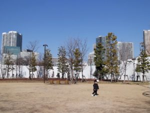 芝浦中央公園芝生広場
