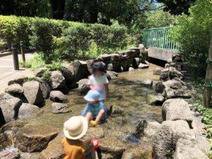 萩中公園川の流れ