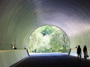 トンネルに外の色が映り込む